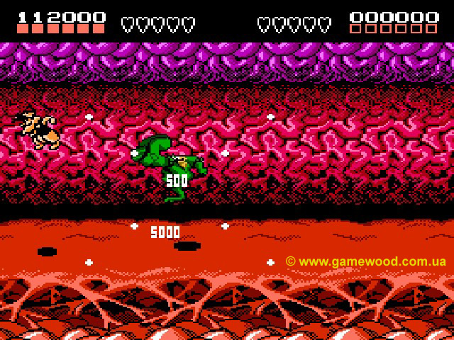 Скриншот игры Battletoads | Dendy (NES) | Полет в неизвестность